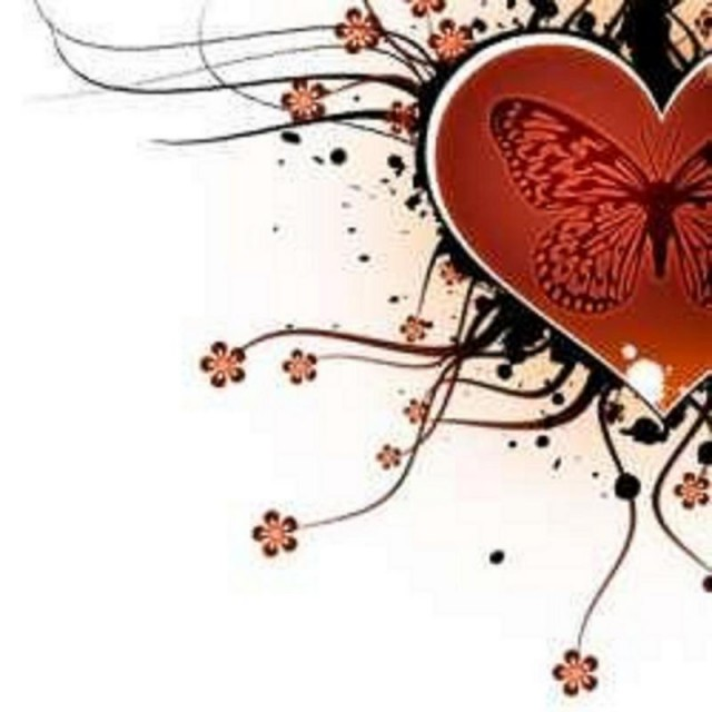 heart-butterfly-lovely-picture